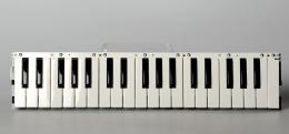 Korg Keybed for Microkorg, 420006800